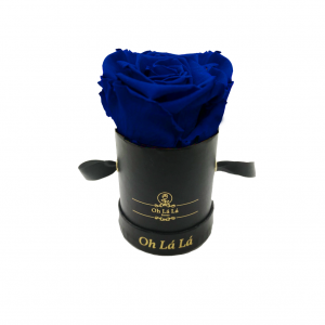 La Mini Black - Blue rose - Oh Lá Lá Roses
