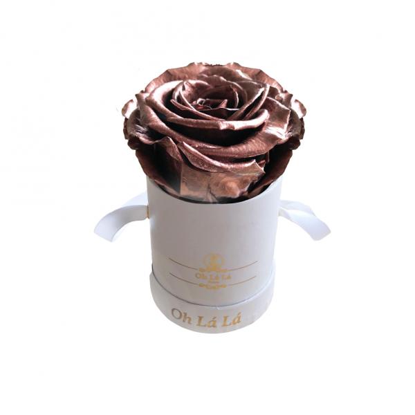 Lá Mini White - Chocolate Gold Rose - Oh Lá Lá Roses