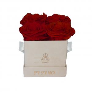 Lá Petite Beige Red Roses | Oh Lá Lá Roses